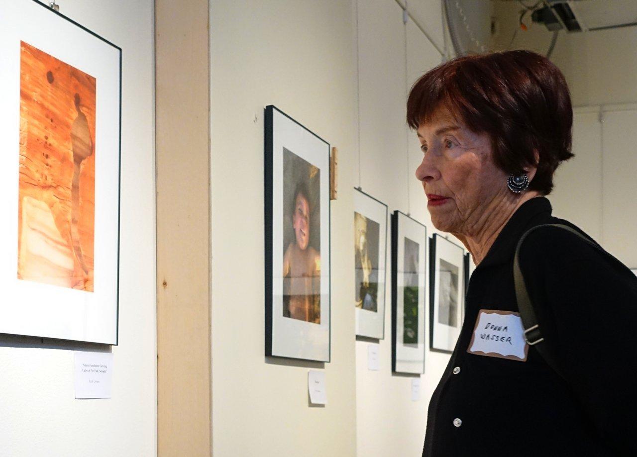 Art appreciator appreciating art